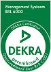 DEKRA-SIEGEL-3441 BRL6000 KLEIN